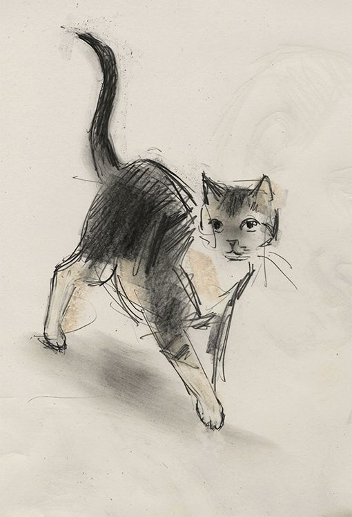 Walking Cat by Julian Williams. - http://pinterest.com/pin/505951339361404646/
