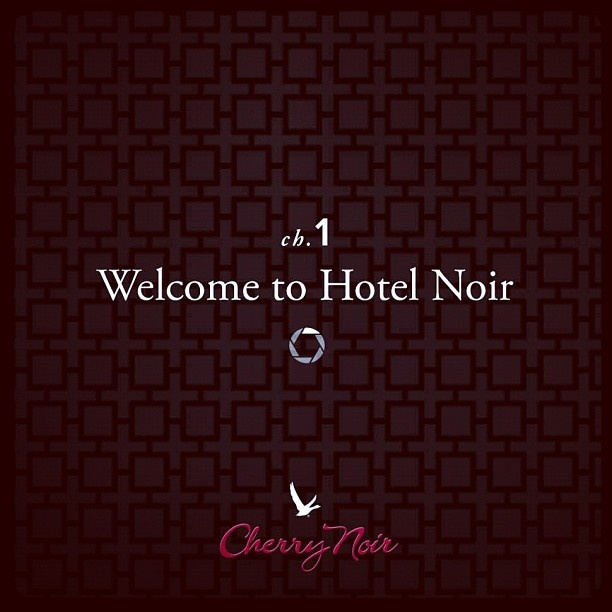 "@greygoose's photo: ""Chapter 1: Welcome to Hotel Noir #hotelnoir. Uncover more @greygoose."": Photos Stories, Hotelnoir Photos, Greygoos Photos, Greygoose Photos, Greygoo Photos"