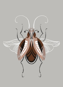 Copper Beetle by Adam Gale - beautiful hand printed screenprint and limited edition of only 30 - finished with copper ink - this is gorgeous!