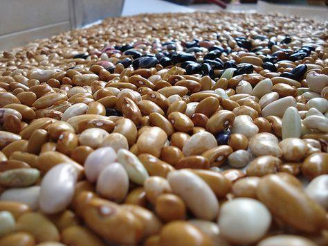 Come cuocere i fagioli secchi alla perfezione http://www.trucchidicasa.com/ricette/preparazioni-base/come-preparare-e-cuocere-i-fagioli-secchi/