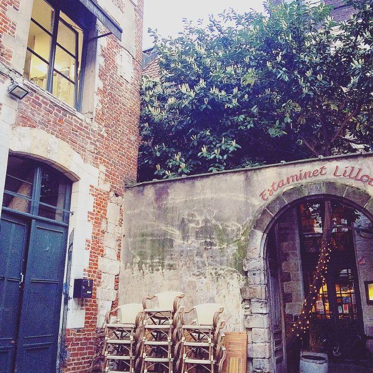 121 vind-ik-leuks, 12 reacties - Lucy Porter (@lucy_lalingua) op Instagram: 'Pretty little corner of Lille #lille #france #europe #frenchliving #lavieestbelle #europetrip…'