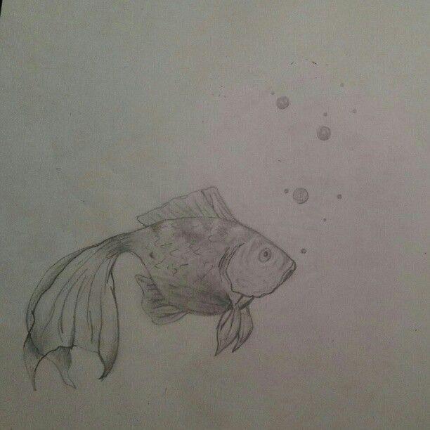 Goldfish #art #sketch #fish #goldfish