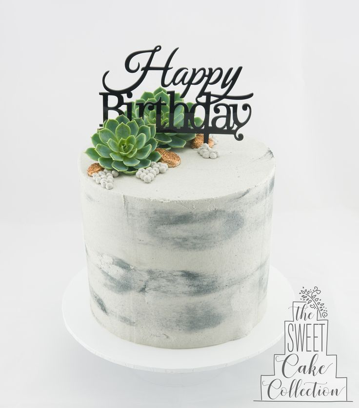Concrete and Succulents Cake