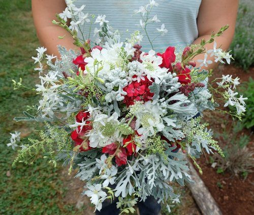 Spring bridal bouquet with dusty miller, cloud larkspur, scabiosa, snapdragons, and more