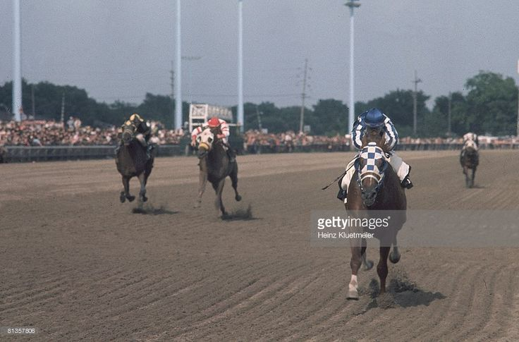 371 Best Images About Secretariat Racing Pictures On