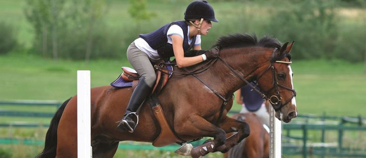 Equestrian sports at ACG Strathallan