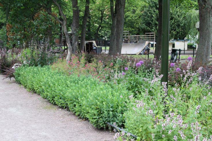 Besöksträdgård –Sommarvardagsrum i stan Under sommaren fylls Folkets Park av människor från förmiddag till långt in på natten. Man umgås, grillar, leker och festar. Ofta är det konserter, loppis och festivaler och här samlas man inför storbild vid schlagerfestivalen och fotbolls-VM.Parkenär onekligen en mötesplats för många malmöbor.Och glädjandebjuder Folkets Park även på upplevelser för den trädgårdsintresserade! Här finns rabatter och planteringar i olika stil och storlek. En stor…