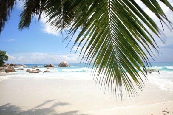 Le Seychelles di  Press Tours www.presstours.it