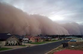 Tsunami o Maremoto es una palabra japonesa que significa ola de puerto. Un tsunami, es una ola gigante que puede llegar a arrasar a todo un país. Puede ser de miles de metros de alto. El tsunami mas grave en la historia fue el tsunami sobre el oceano índico en 2004.