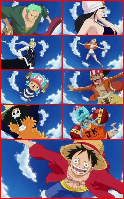 The Straw Hat Pirates: what is this from?