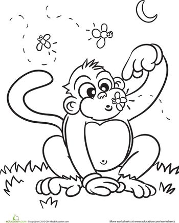 Color The Cute Monkey