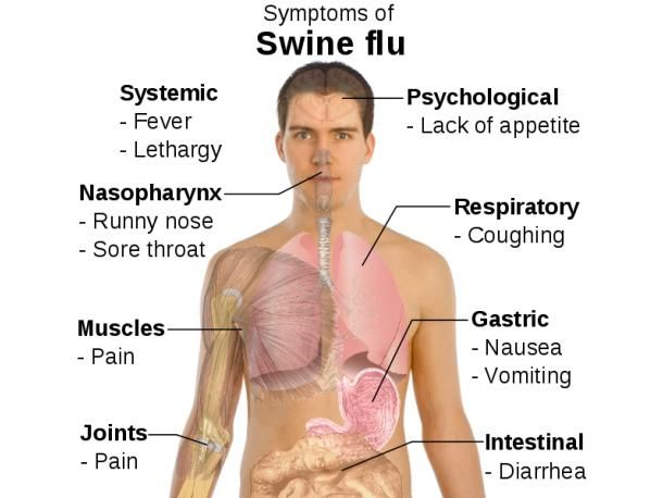 Common symptoms of H1N1 Swine Flu are as follows:      Fever, usually high, i.e., more than 100 degrees F.     Chills.     Running nose and sneezing.     Cough.     Sore throat.     Headache.     Lethargy.     Body pains.     Malaise, i.e., general feeling of ill health.     Fatigue.     Muscle cramps.     Nausea and Vomiting.     Diarrhoea.  For more information on Swine Flu, click here.