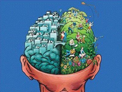 Cognitive Dissonance explained: Healthy Relationships, Holistic Healing, Human Natural, Balance Life, Brain Damaged, Leftbrain, Damaged Habits, Left Brain, Rights Brain