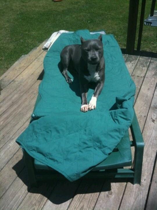 She loves to suntan :-)
