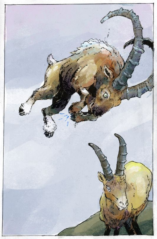 Goats jumping, mountaintop bumping.  Jan Willem Middag