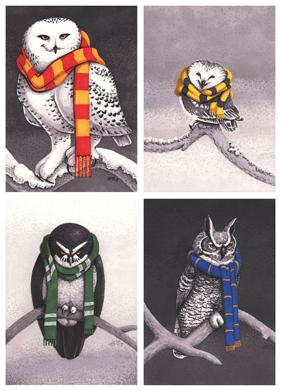 Harry Potter inspired: Set of 4 Prints (5x7) - Hogwarts House Owls. Gryffindor's Snowy Owl, Hufflepuff's Northern Saw-Whet Owl, Slytherin's Spectacled Owl, Ravenclaw's Great Horned Owl. Can purchase as set or individually!                                                                                                                                                     More