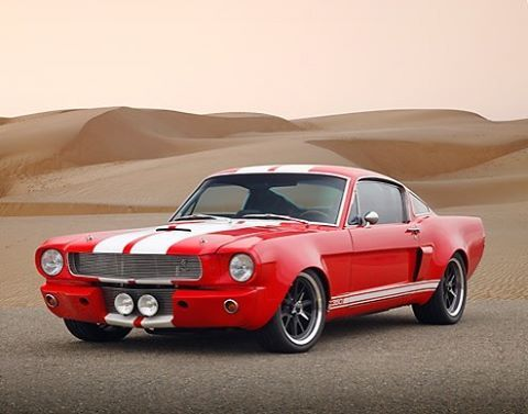 2580 Best Mustangs Images On Pinterest Car Ford