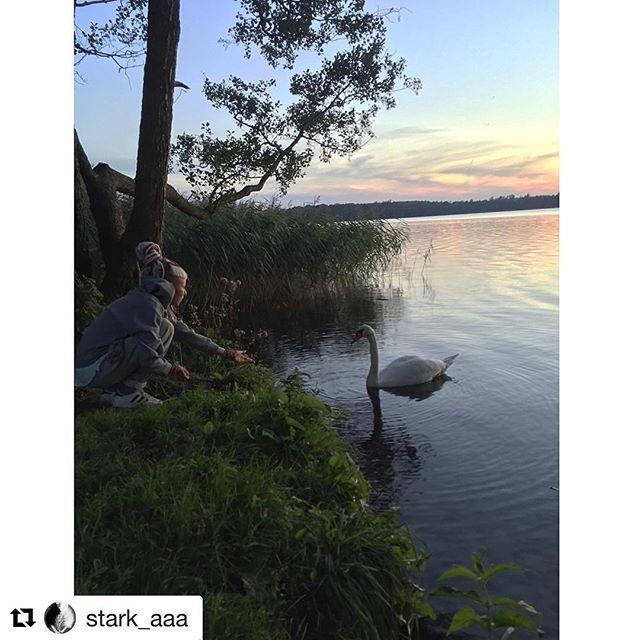 #Repost @stark_aaa with @repostapp ・・・ be in love with nature 💚🌿 #lovemylife #biskupiec #bischofsburg #ibiskupiec #dadaj #biskupiecfb