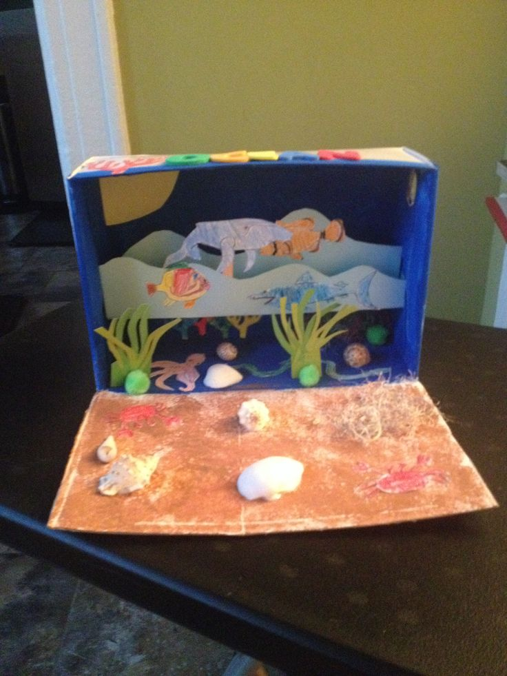 8 best school projects images on pinterest science fair projects ocean habitat project sciox Image collections