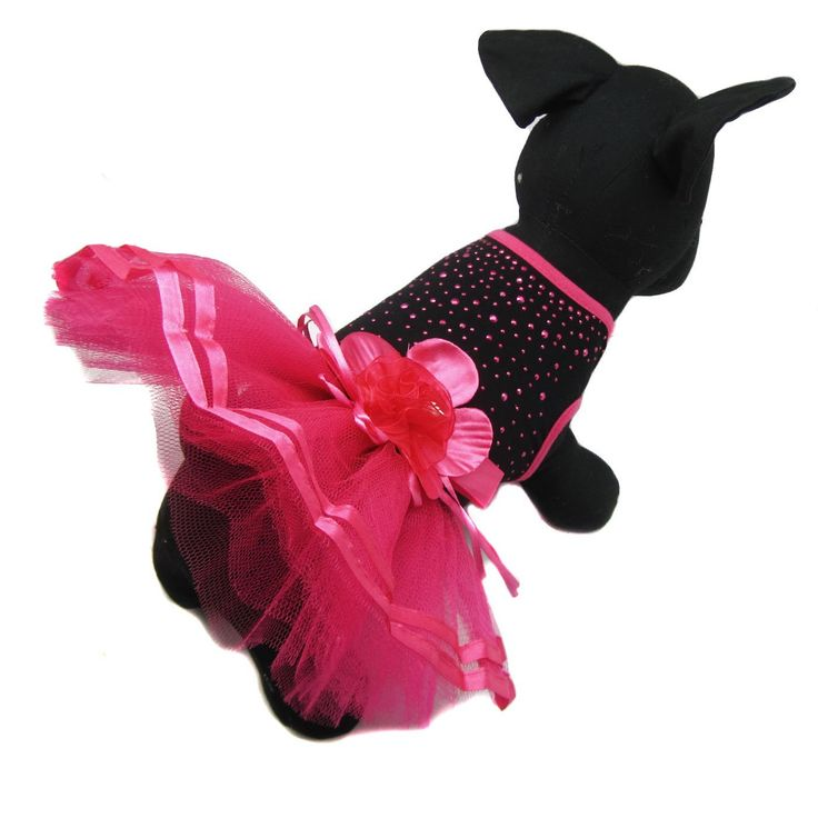Alfie Pet by Petoga Couture - Molly Tutu Party Dress   : Cats Apparel