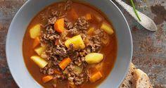Opskrift på suppe med hakket kød og grønt