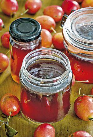 Paradisæbler er perfekte til æblegelé. Her får du en lækker og simpel opskrift på æblegelé - og du kan naturligvis også bruge andre æbler end paradisæbler