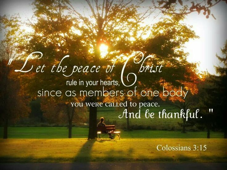 There is such an unending, amazing, indescribable peace knowing Christ :)
