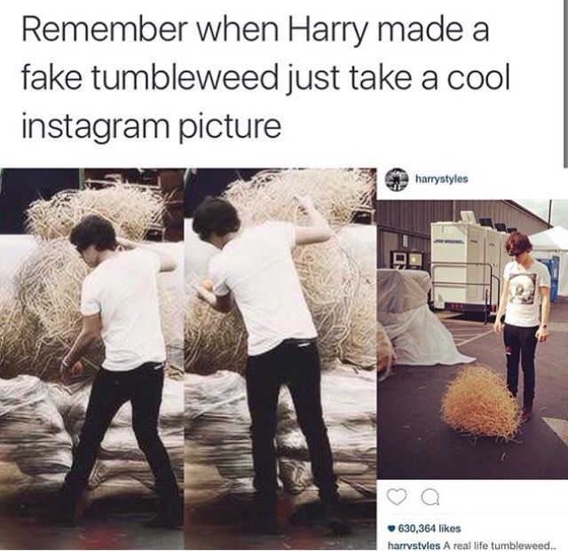 """I find it funny that he captioned the picture """"Real life tumbleweed"""" when in actuality, he made that tumbleweed"""