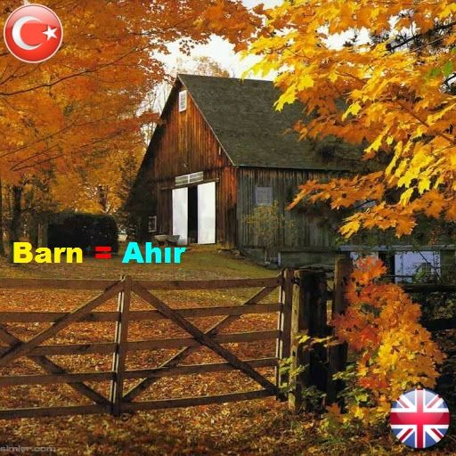 ||| #barn = #ahır, #ambar ||| °•●•° ||| #okunusu = bar:n ||| °•●•° °•●•° ||| Cows lives in the barn = inekler Ahırda yaşarlar ||| °•●•° °•●•° ||| #wordsenglish #englishwords #grammer #vocabulary #ceviri #sozluk #translate # |||