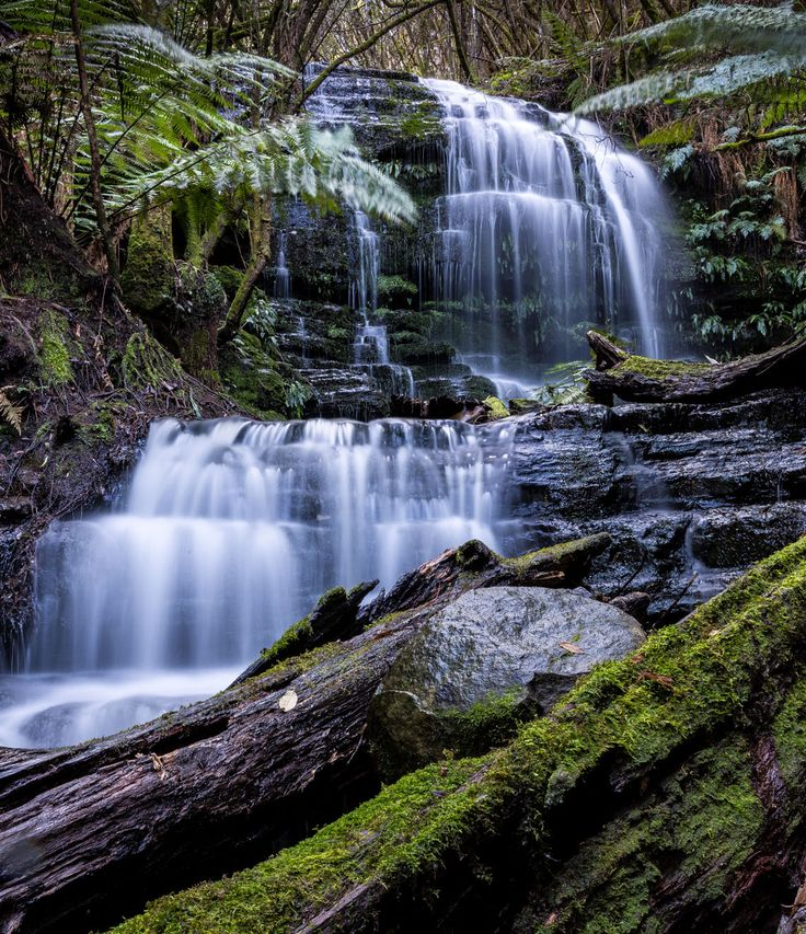 200+ waterfalls await you in #Tasmania - here are 10 to visit in Southern Tasmania. All very accessible, all very photogenic ... there is something very soothing about the flow of water and the instant get-back-to-nature feeling they give. Image credit: @tassiegrammer #hobartandbeyond #hobart #waterfalls