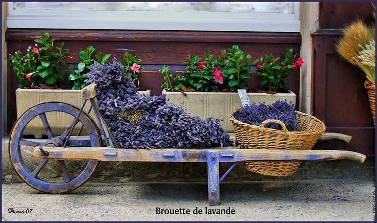 Les 30 meilleures images propos de brouette sur pinterest potirons philippe starck et planters - Brouette en bois de jardin ...