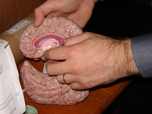 Brain Surgery for Depression