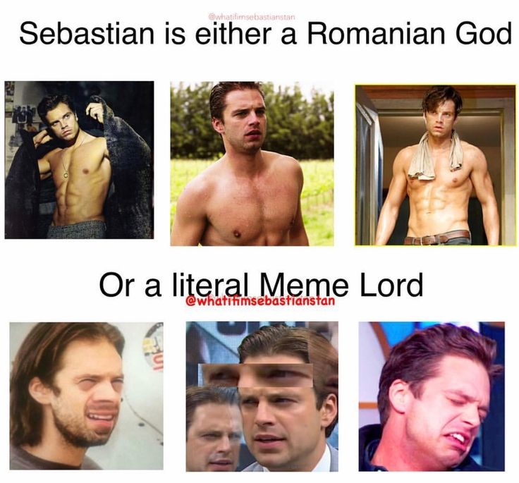 A very accurate description of Sebastian Stan