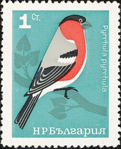bird stamps!