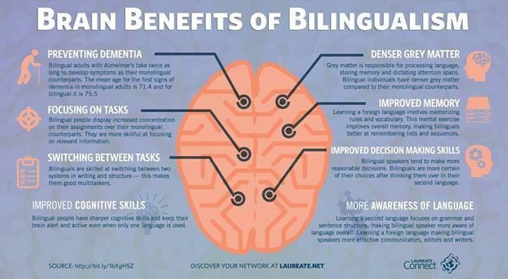 bilingual education improving ones life essay Bilingual education has been a subject of national debate since the 1960s this essay traces the evolution of that debate from its origin in the civil rights act (1964) and the bilingual education act (1968), which decreed that a child should be instructed in his or her native tongue for a transitional year while she or he learned english but was to transfer to an all-english.