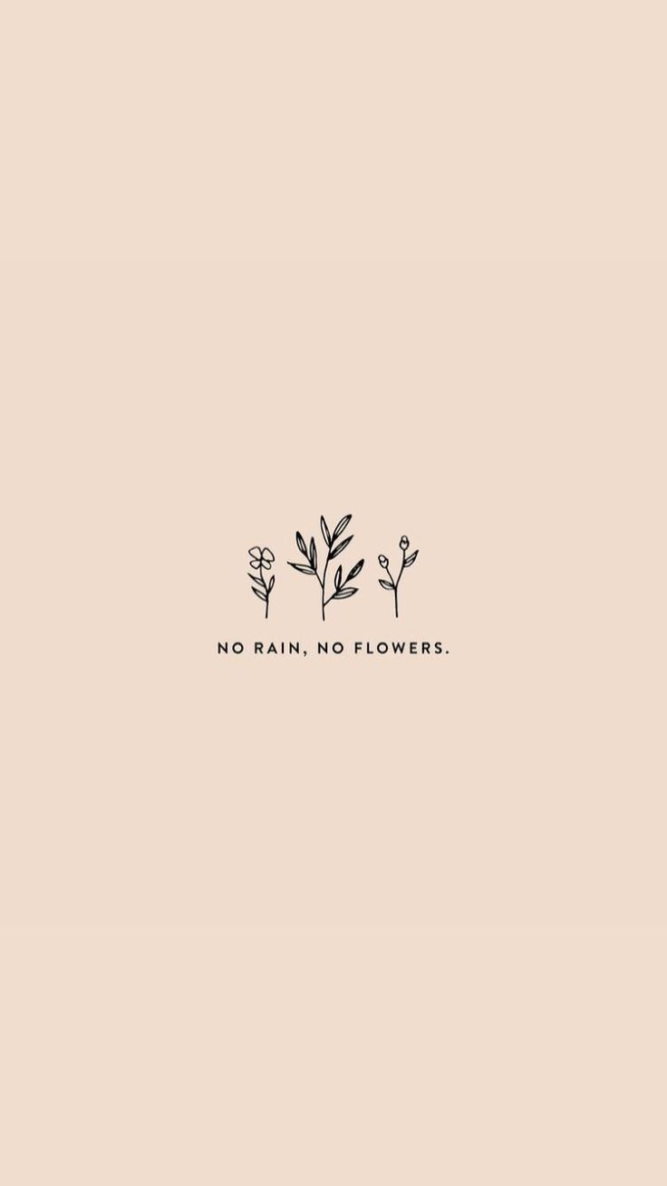 No Rain – No Flowers.  inspiring words, Inspirational Quotes, Quotes to live b…