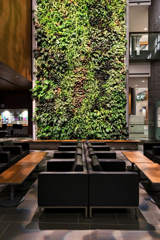 Commercial space design green vertical living wall University of Ottawa / KWC Architects + Diamond Schmitt Architects