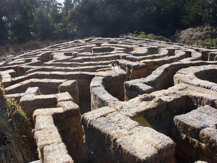 Minotaur's Labrynth Hay Maze,   Arata Pumpkin Farm  Half Moon Bay, CA