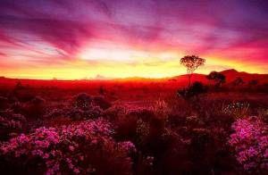 BOA NOITE!!! Ontem me guiou; Hoje me guardou; Amanhã, o meu Deus, já preparou! Amados do Senhor tenham uma linda e abençoada noite! Fiquem na paz...bjs
