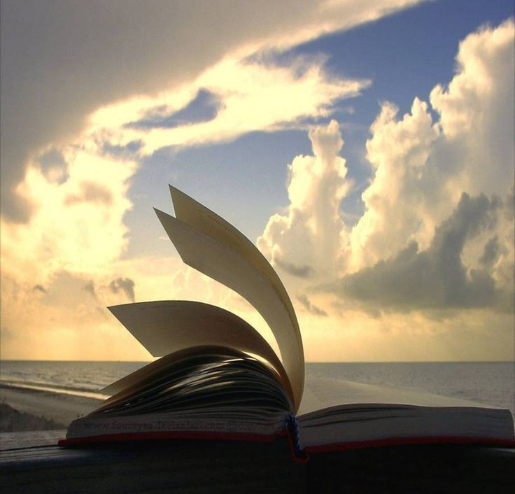 Salmos 4 | | Bíblia Falada
