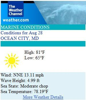 Ocean City Maryland Weather Forecast for Thursday, August 28th 2014 - Palm trees swayin' in the summer breeze... #ocmd