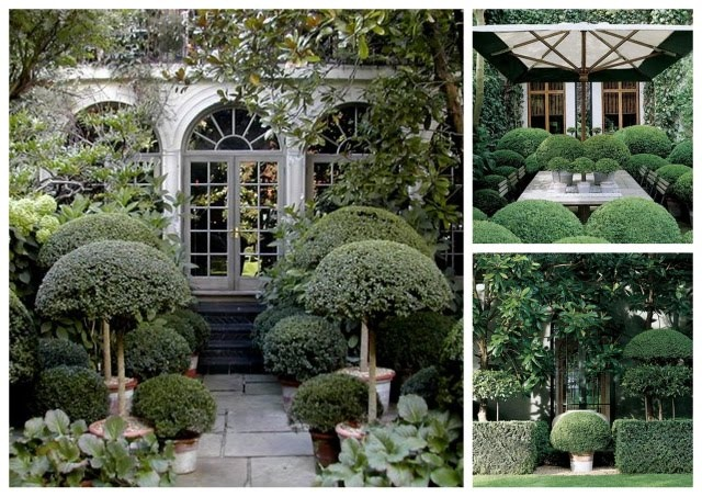 Replace Glass On Store Door In Courtyard With Mirrored Anouska Hempel Design