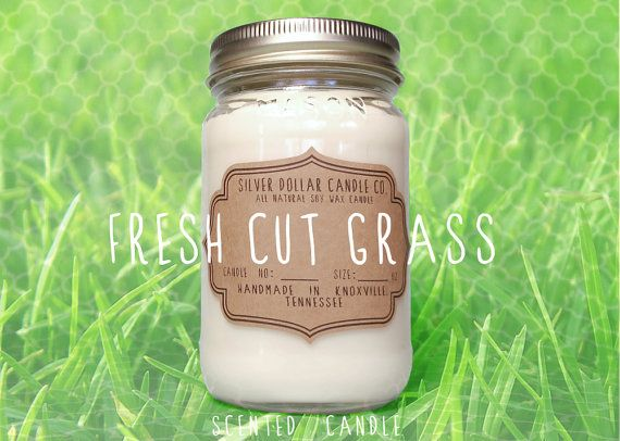 Fresh Cut Grass 16oz Scented Candle Spring by SilverDollarCandleCo