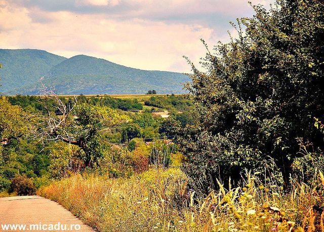 Towards the silence- Sasca Montana, Cheile Nerei