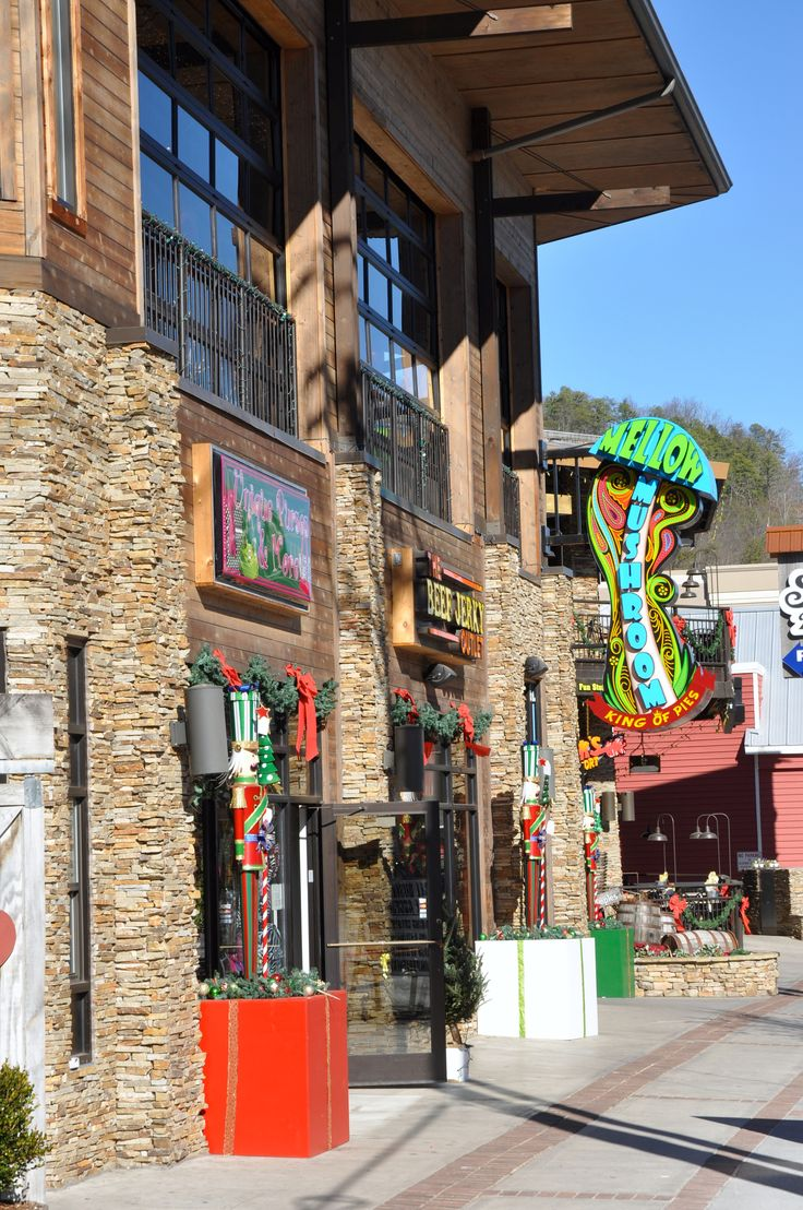 The Mellow Mushroom In Gatlinburg   Delicious Pizza And More!