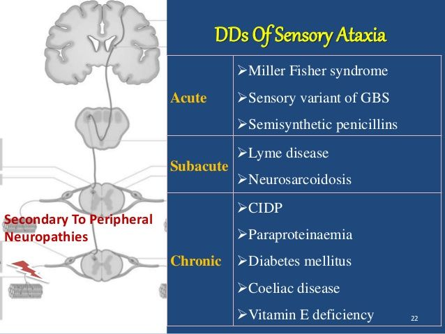 Image result for sensory ataxia infographic