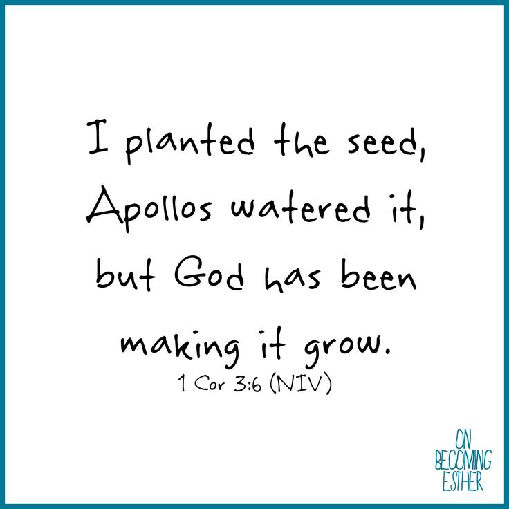 1 Corinthians 3:6, growth