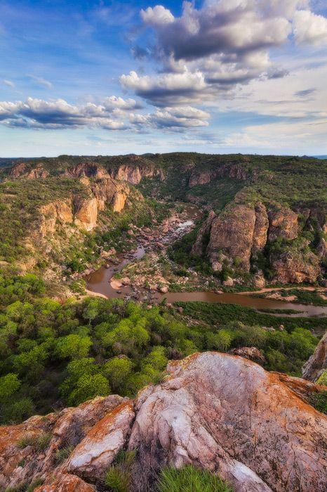 Lanner Gorge Lanner Gorge, Pafuri, Kruger National Park, South Africa