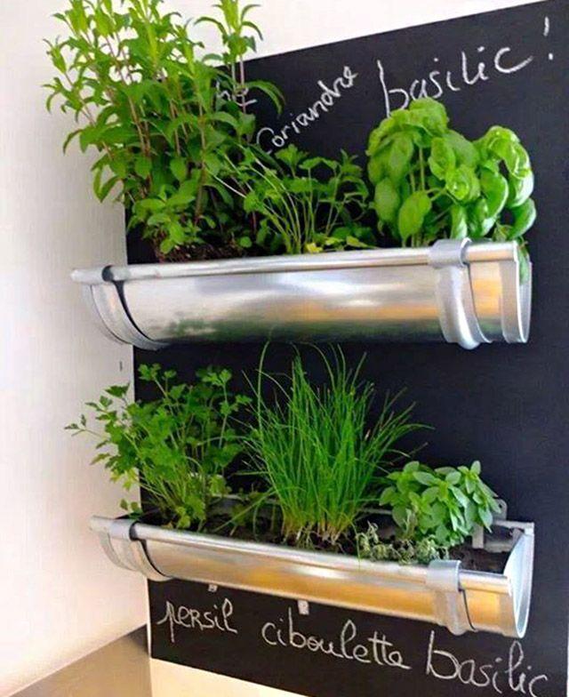 Eu gosto muito de pesquisar ideias de jardinagem, quase nunca dá tempo para colocar nenhuma delas em prática, mas mesmo assim queria dividir com vocês essas maneiras super criativas para plantar su…