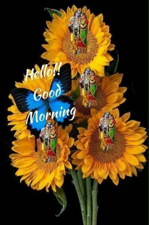 Fdf D D C Bc Be A D Good Morning on Yellow Greeting Cards